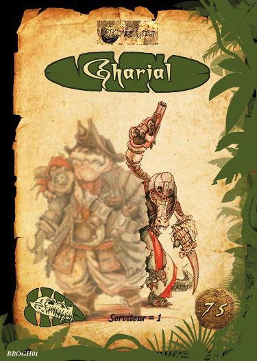 Louis et gharial66